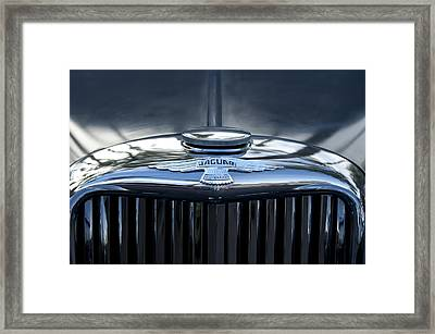 Jaguar Hood Ornament Framed Print by Jill Reger