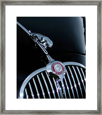 Jaguar Hood Ornament Framed Print