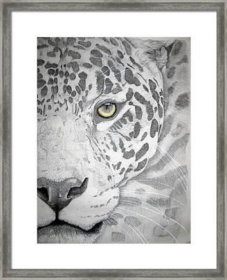 Framed Print featuring the drawing Jaguar by Mayhem Mediums