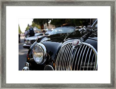 Jaguar Framed Print by Wingsdomain Art and Photography