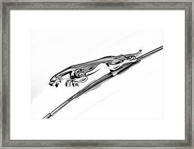 Jaguar Xk 150 Hood Ornament  Framed Print by Tim Gainey