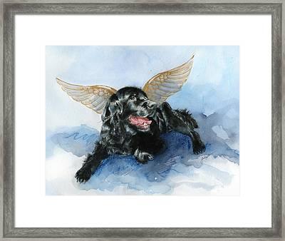 Jake Angel Framed Print by Galen Hazelhofer