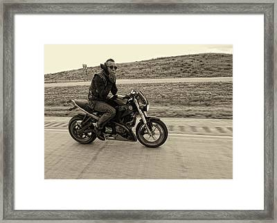 Jake Framed Print by Sara Young