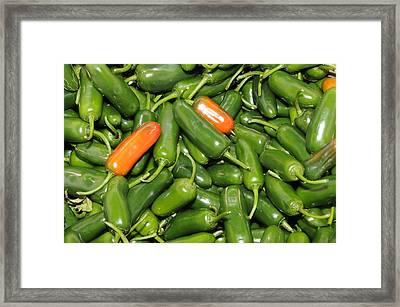 Jalapeno Peppers Framed Print