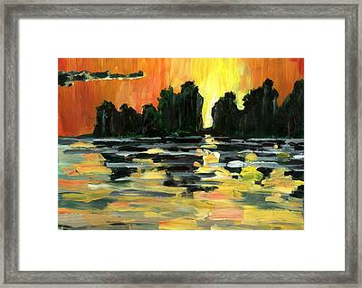 Jalisco Jungle River Framed Print by Randy Sprout