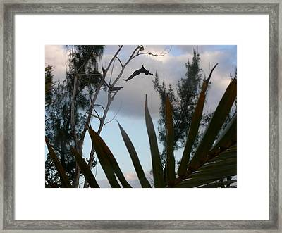Jamaica Dive Framed Print by Peter  McIntosh