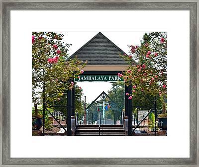 Jambalaya Park In Gonzales Louisiana Framed Print