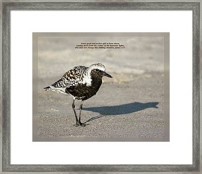 Framed Print featuring the photograph James 1 17 by Dawn Currie