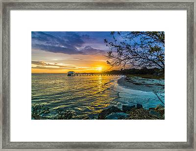 James Island Sunrise - Melton Peter Demetre Park Framed Print