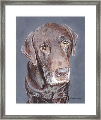 Jameson Framed Print