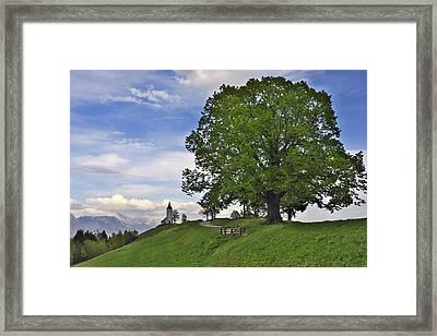 Jamnik Framed Print by Ivan Slosar