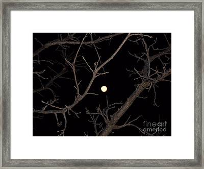 Jan Full 1 Framed Print by The Stone Age