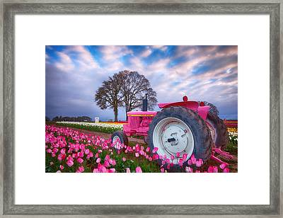 Jane Deere Framed Print by Darren White