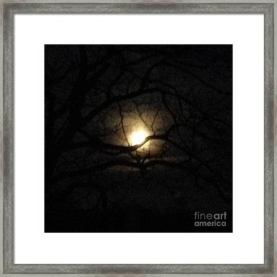 January 2016 Full Moon Through Walnut Tree Framed Print by Conni Schaftenaar