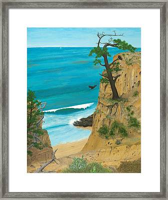 January At Torrey Pines Framed Print