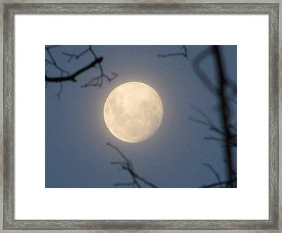 January Blue Moon Framed Print by Lindie Racz