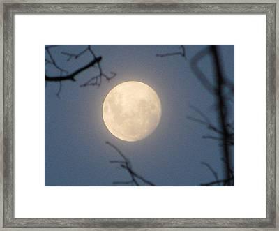 January Blue Moon Framed Print