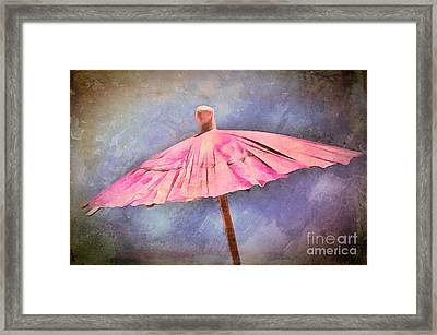 January Drizzle Framed Print