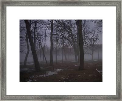 January Fog 2 Framed Print