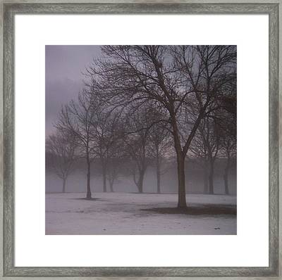 January Fog 4 Framed Print
