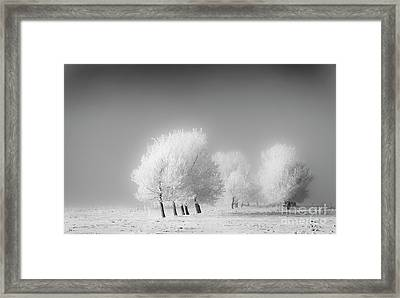 January Frost Framed Print