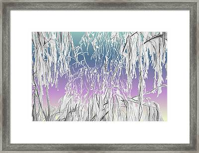 January Hoarfrost Framed Print