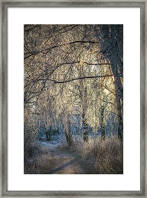 January,1-st, 14.35 #h4 Framed Print