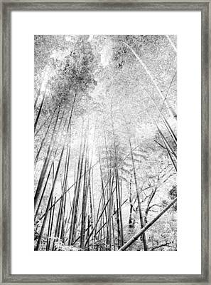 Japan Landscapes Framed Print