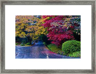 Japanese Autumn Framed Print by Kobby Dagan