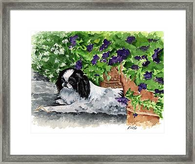 Japanese Chin Puppy And Petunias Framed Print by Kathleen Sepulveda
