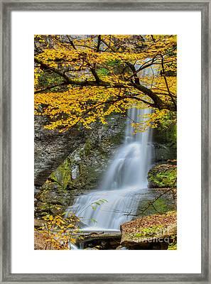 Japanese Falls Framed Print