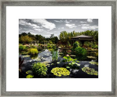 Japanese Garden And Lagoon Framed Print by Mountain Dreams