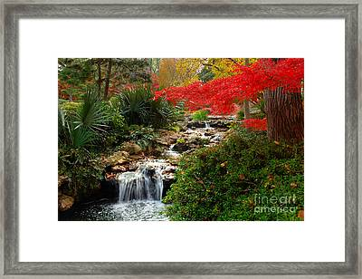 Japanese Garden Brook Framed Print by Jon Holiday
