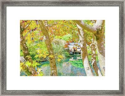 Japanese Garden Pond Framed Print
