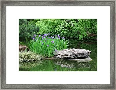 Japanese Gardens - Spring 02 Framed Print