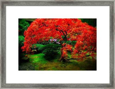 Japanese Gardens Portland Framed Print
