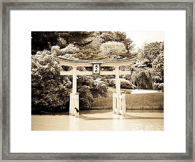 Japanese Hill And Pond Garden New York Framed Print