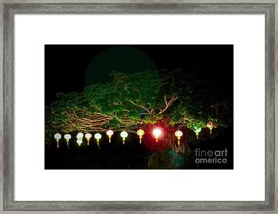 Japanese Lantern Tree Framed Print