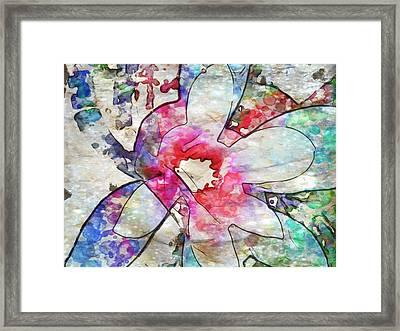 Japanese Magnolia  Framed Print