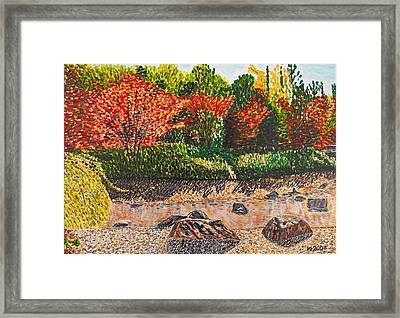 Japanese Maple Trees At The Creek Framed Print by Valerie Ornstein