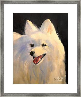 Japanese Spitz Dog  White Dog Framed Print by Karen Winters