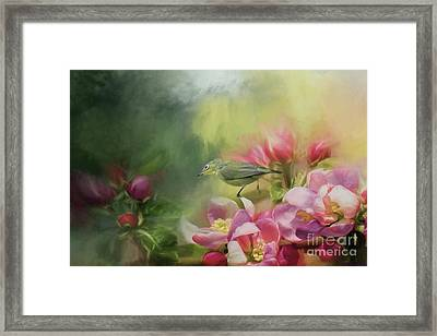 Japanese White-eye On A Blooming Tree Framed Print