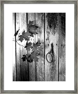 Japton Door Framed Print
