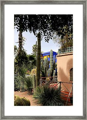 Framed Print featuring the photograph Jardin Majorelle 4 by Andrew Fare