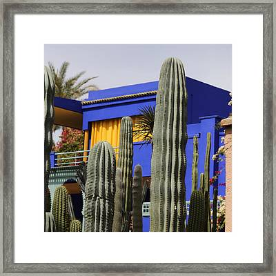 Framed Print featuring the photograph Jardin Majorelle 5 by Andrew Fare