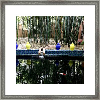 Framed Print featuring the photograph Jardin Majorelle by Andrew Fare