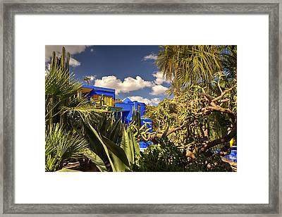Jardin Majorelle Framed Print by Robert Murray