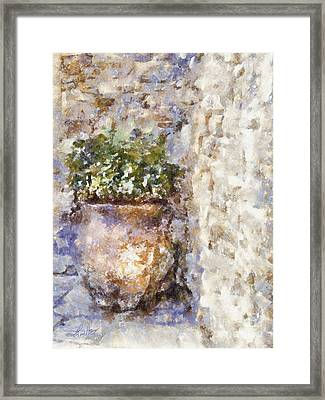 Jardiniere Framed Print by Shirley Stalter