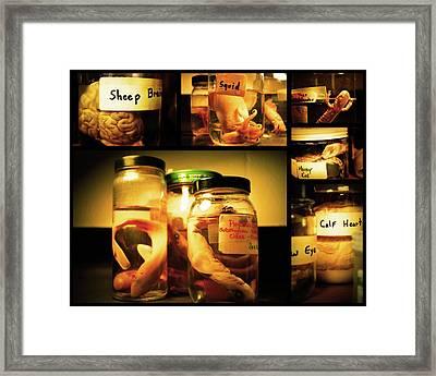 Jarred Collection I Framed Print by Rheann Earnest