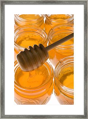 Jarrs Of Honey Framed Print